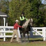 South Carolina Horse Master Shoot – Behind The Scenes