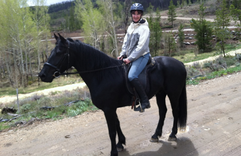 trail riding on the gelding