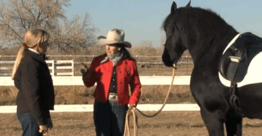 Building Confidence, Friesian, Horse Master with Julie Goodnight