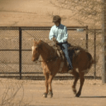 Episode 411 – Cowboy Up