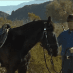 Episode 516 — First Canter