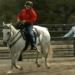 Episode 607 — Roping To Loping