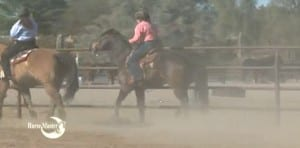 Horse Master with Julie Goodnight