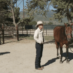 Episode 908 – Cross Dressed: English to Western Saddles