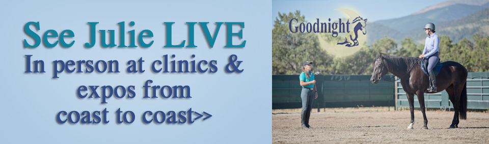 See Julie Live: In person at clinics and expos from coast to coast
